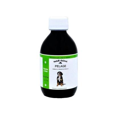 pelage-chiens-10-25kg
